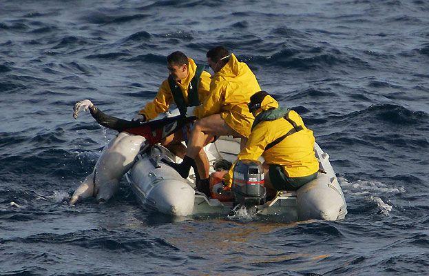 Fotopress 05. Secuencia de un naufragio 9