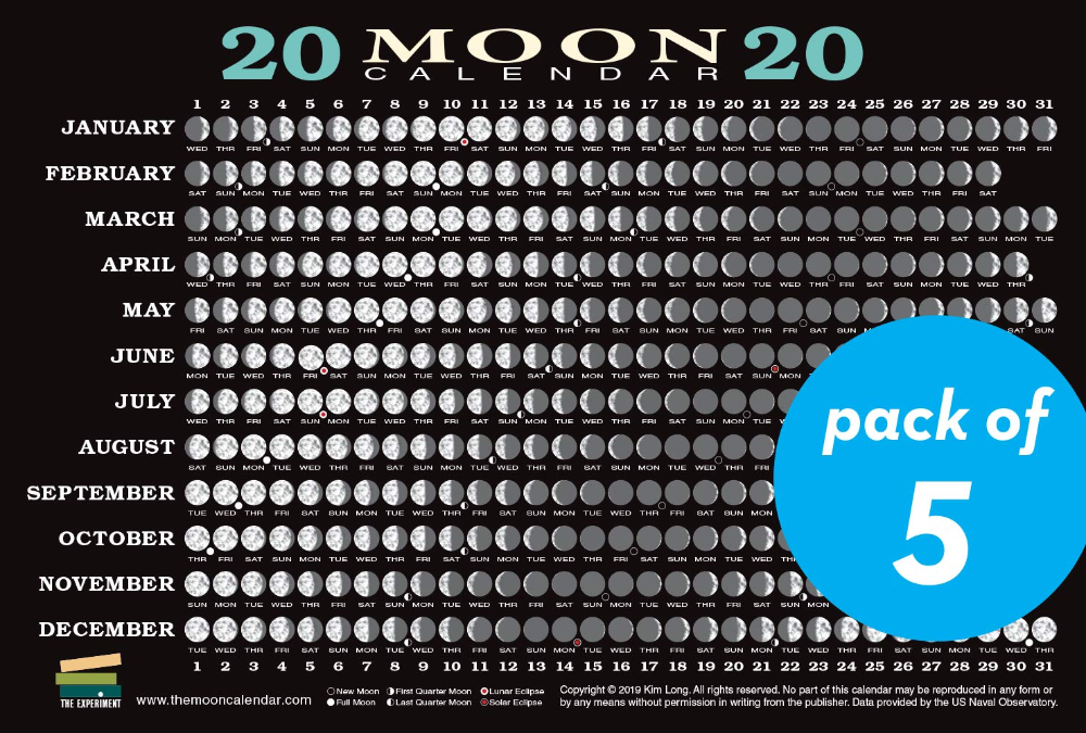 Moon Phases February 2020 Google Search In 2020 Moon Calendar Moon Phase Calendar Calendar June