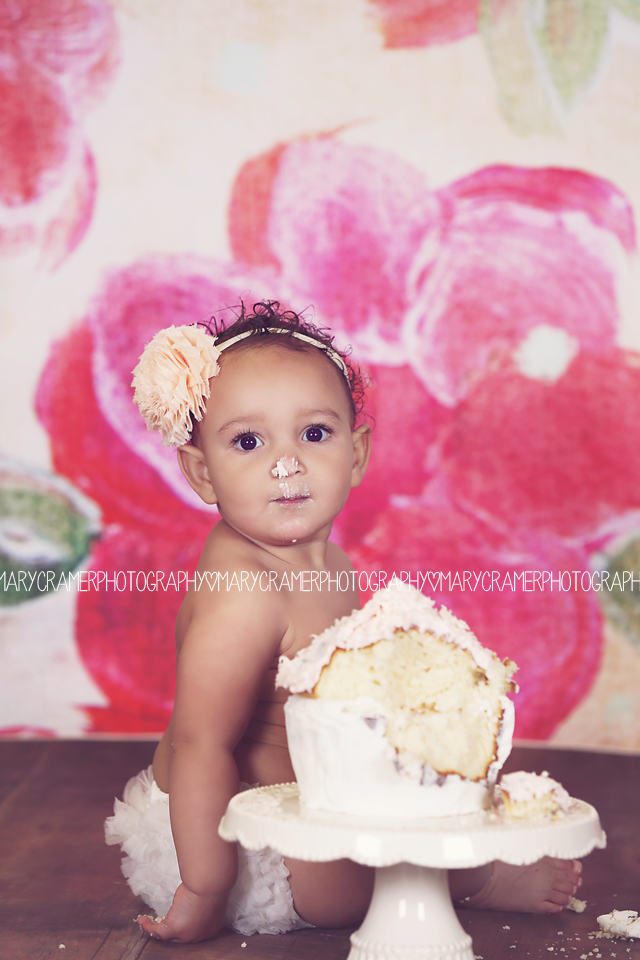 cake smash first birthday photo idea one year old