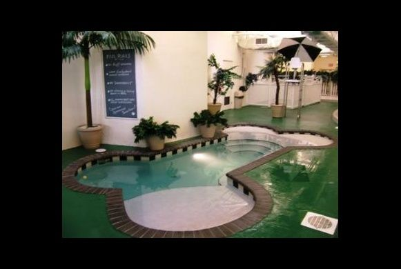 bone shaped dog pool | indoor dog park your dog can run and