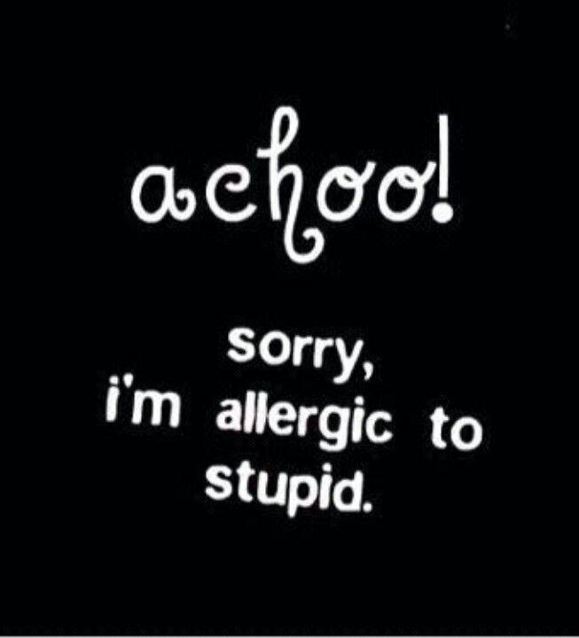 I M Allergic To Stupid Witty Quotes Cheeky Quotes Funny Quotes