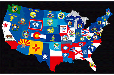 All The Official State Flags State Flags Flag United States Flag