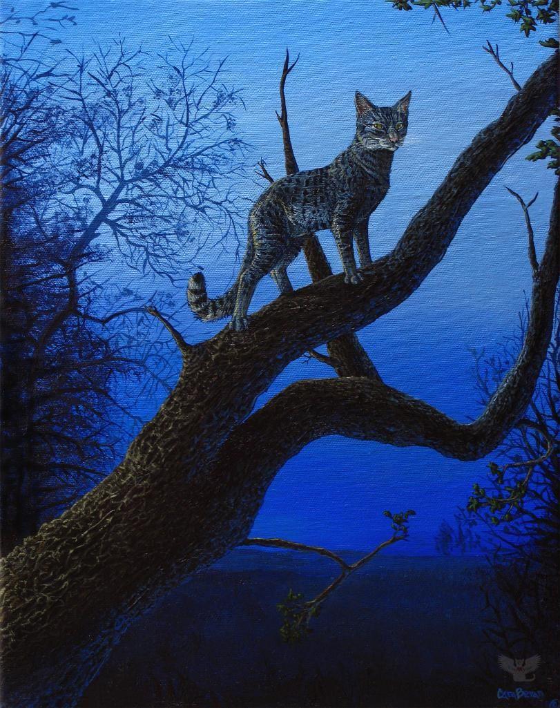 Wild Blue by Cara Bevan