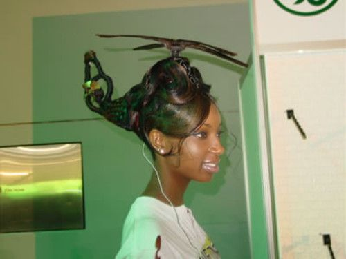 Hairshow winner. After winning she flew home.