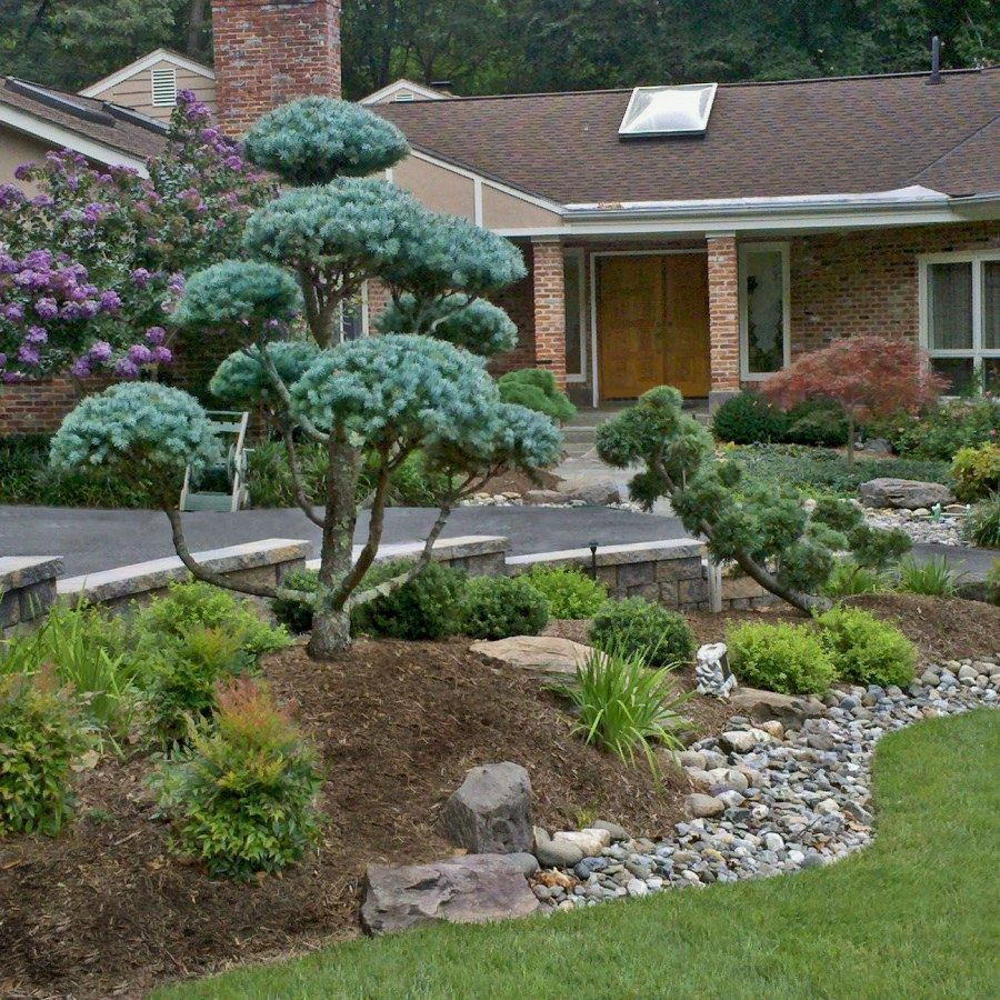 Landscape Designs Strategies
