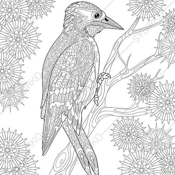 Woodpecker Coloring Pages Animal Coloring Book Pages For Adults