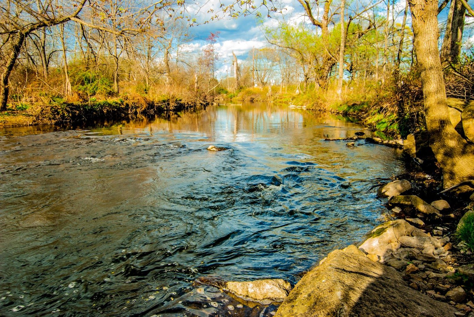 Litton's Fishing Lines: Climate Change in the Raritan Headwaters: Columbia University Students Speak