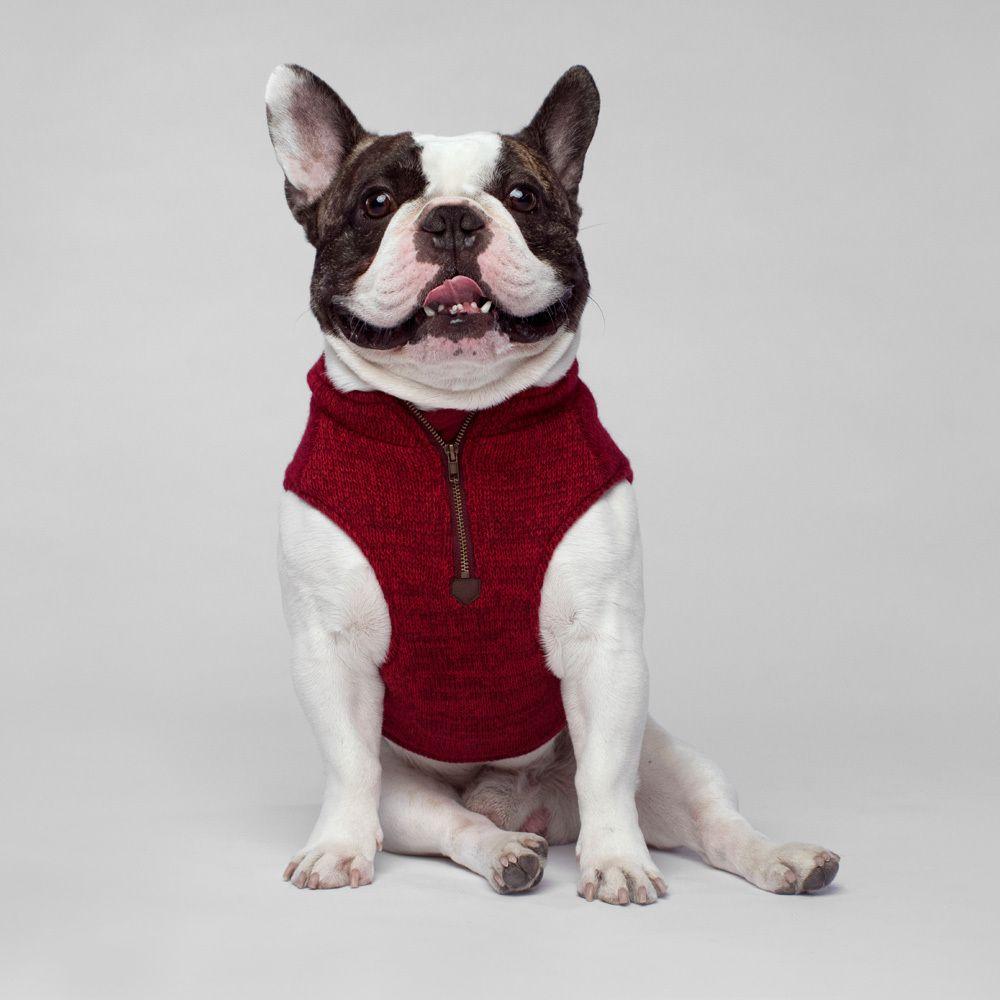 Canada Pooch Northern Knit in Maroon | The sleek and stylish fleece ...