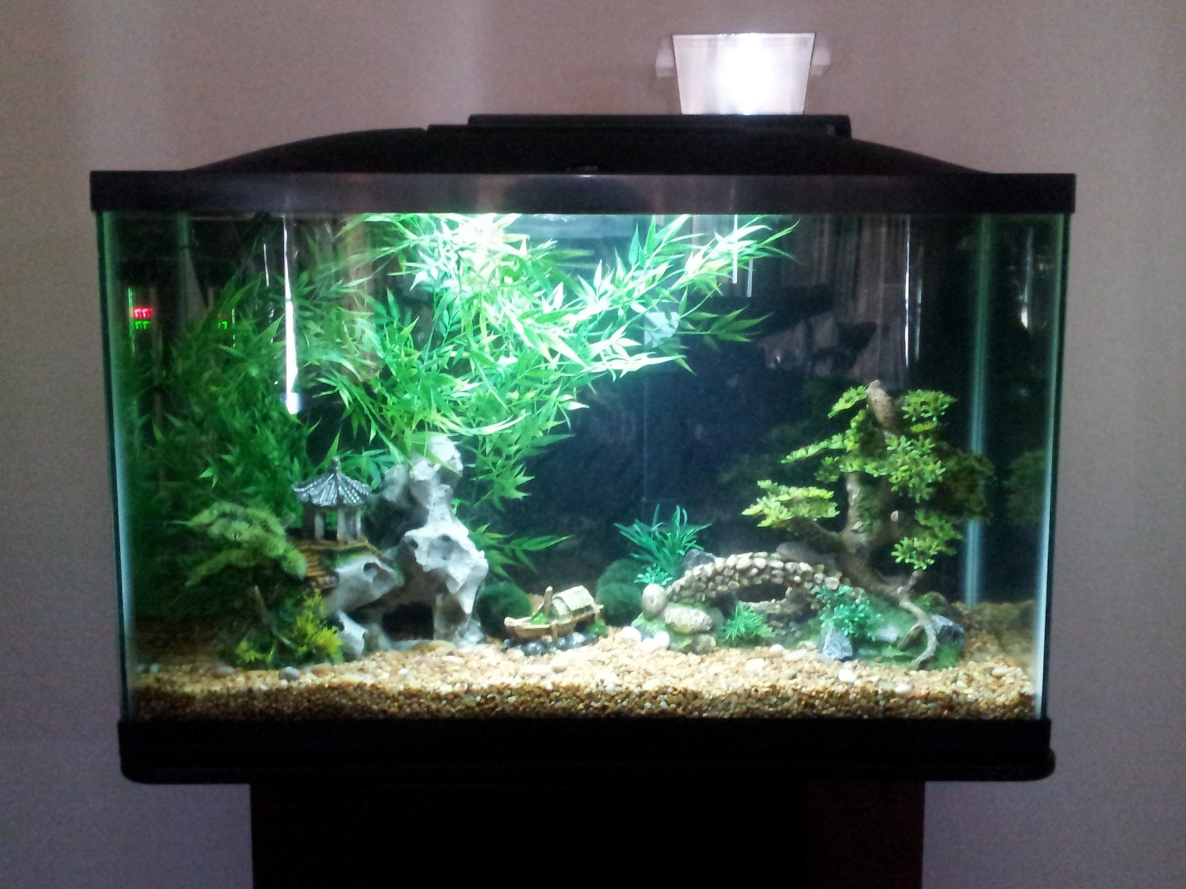 Freshwater fish aquarium accessories - Any Ideas I Built A Diy Background A Castle With Terrafuna Stuff I Don T Know How To Spell It But Eh The Medieval Theme I Was Imagining Kind