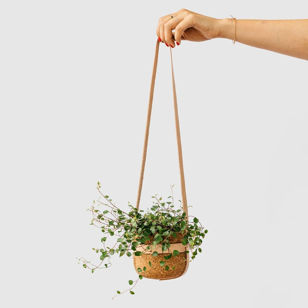 Leather Strap Hanging Planter is part of Green Home Accessories Hanging Planters - The Leather Strap Hanging Planter is made with natural cork and leather  We wanted to design an object that was just as stunning without a plant as