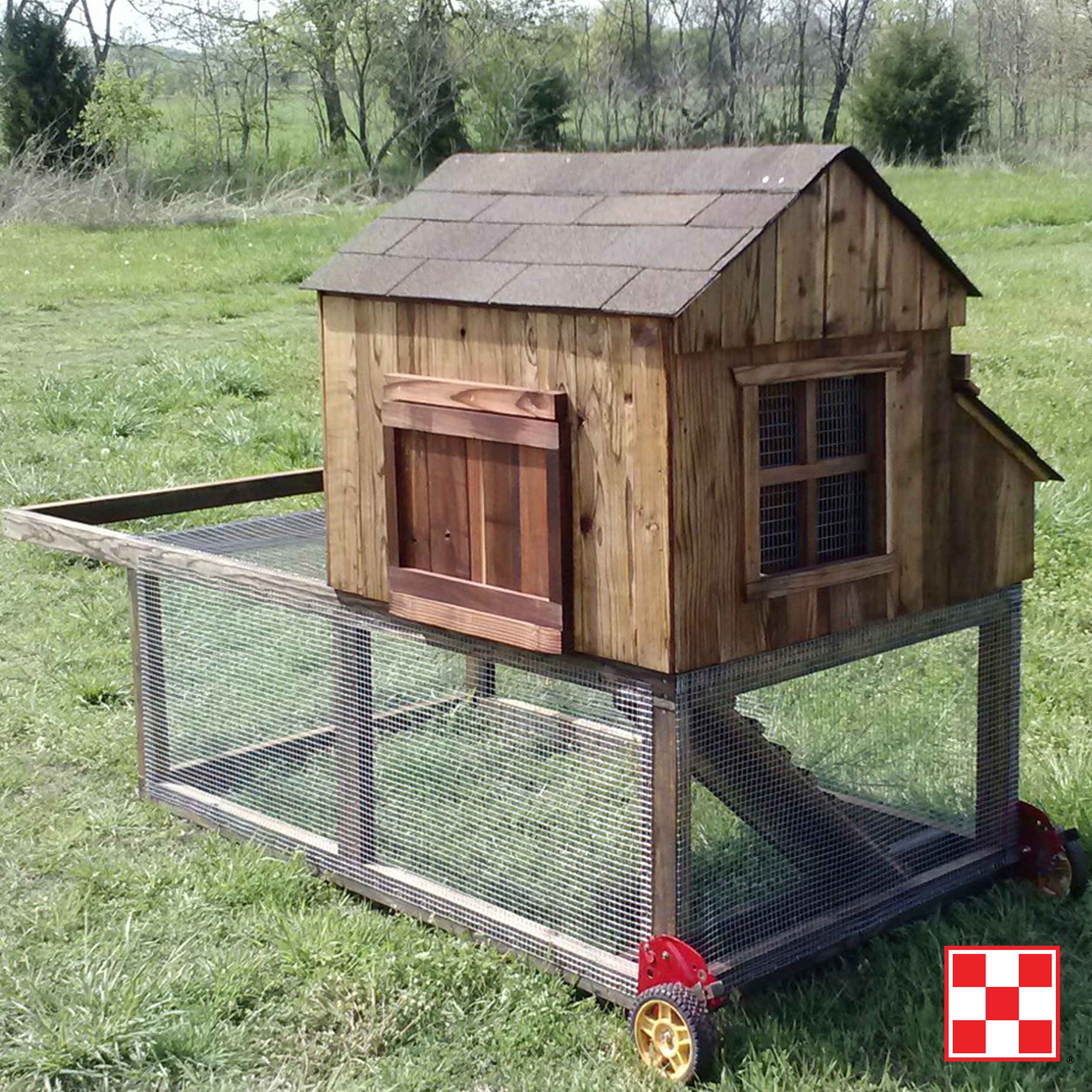 Building A Chicken Coop Backyard Coop Chickens Backyard