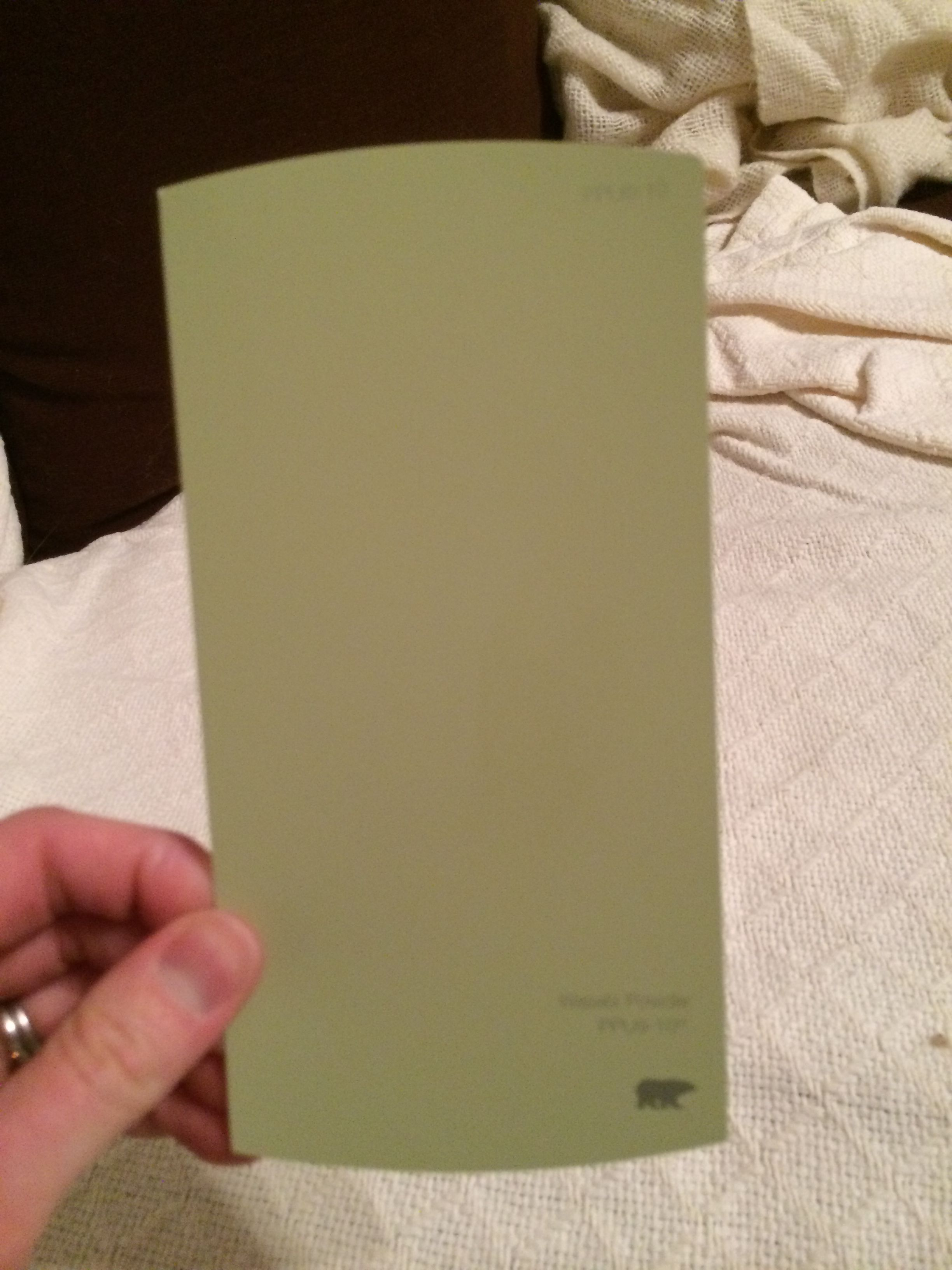 Kitchen Wall Color Behr Wasabi Powder In 2019 Kitchen