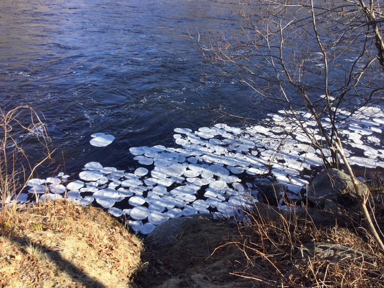 Round river ice 2016 (1)