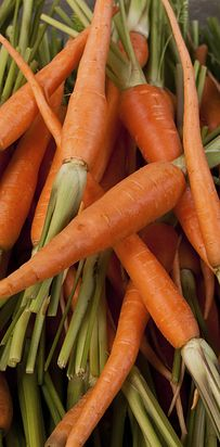 CARROTS (Health Score: 399) | 26 Most And Least Healthy Vegetables