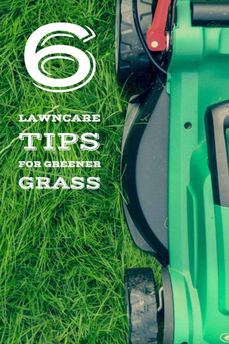 6 lawn care tips for greener lawn care lawn care