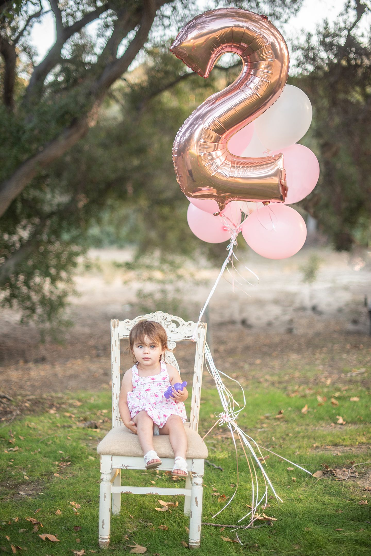 Birthday photoshoot for two year old baby girl