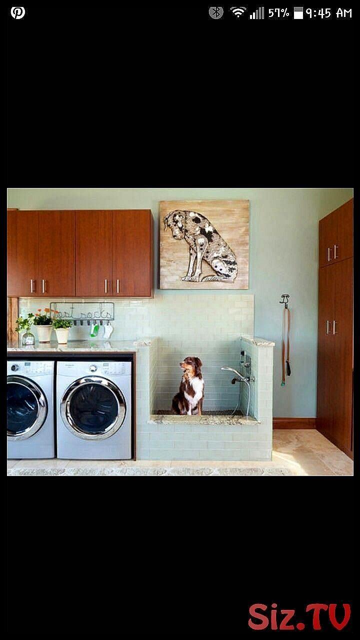 Wasruimte met hondenbad Tik op de pin voor de meest schattige babykleding van pawtastic bont Je zult dol zijn op de hondenkleding en kattenkleding en kattenkledingWasruim...
