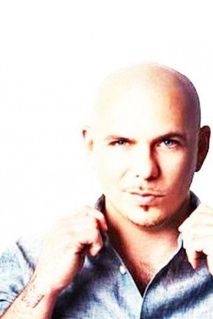 Download Pitbull Wallpapers For Android By Sunshine App