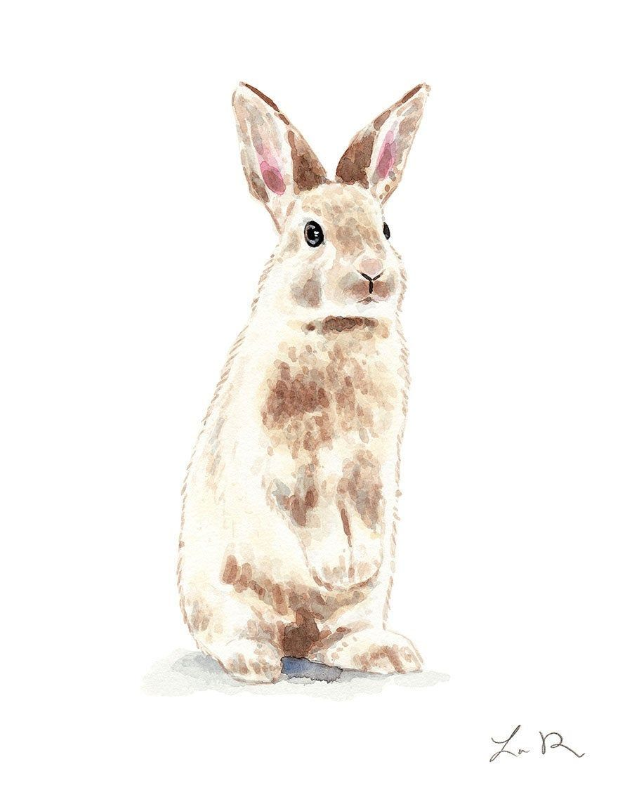 Art Print Bunny Rabbit No 2 Watercolor Baby Nursery Decor Etsy Cute Animals Cute Baby Bunnies Bunny Rabbit Art