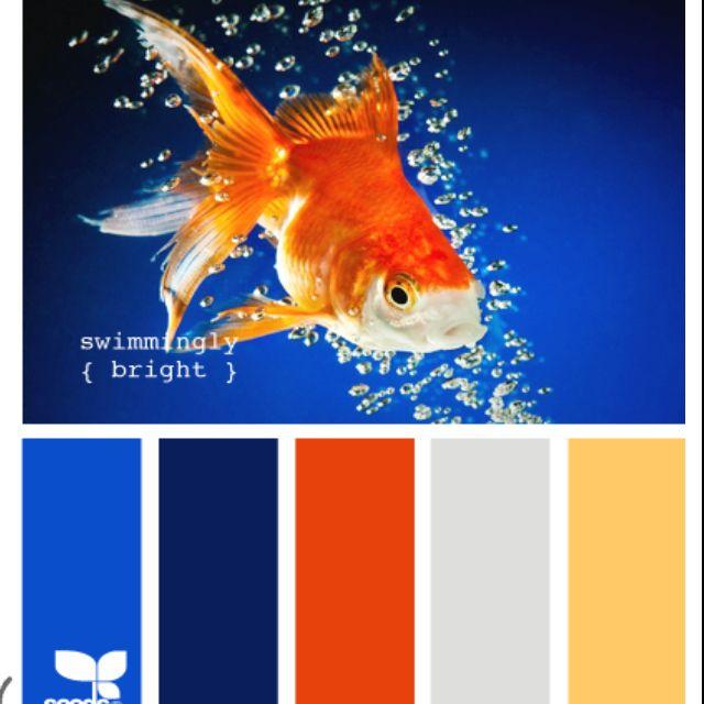 die besten 25 blue orange ideen auf pinterest blau komplement rfarbe blau orangene k che und. Black Bedroom Furniture Sets. Home Design Ideas