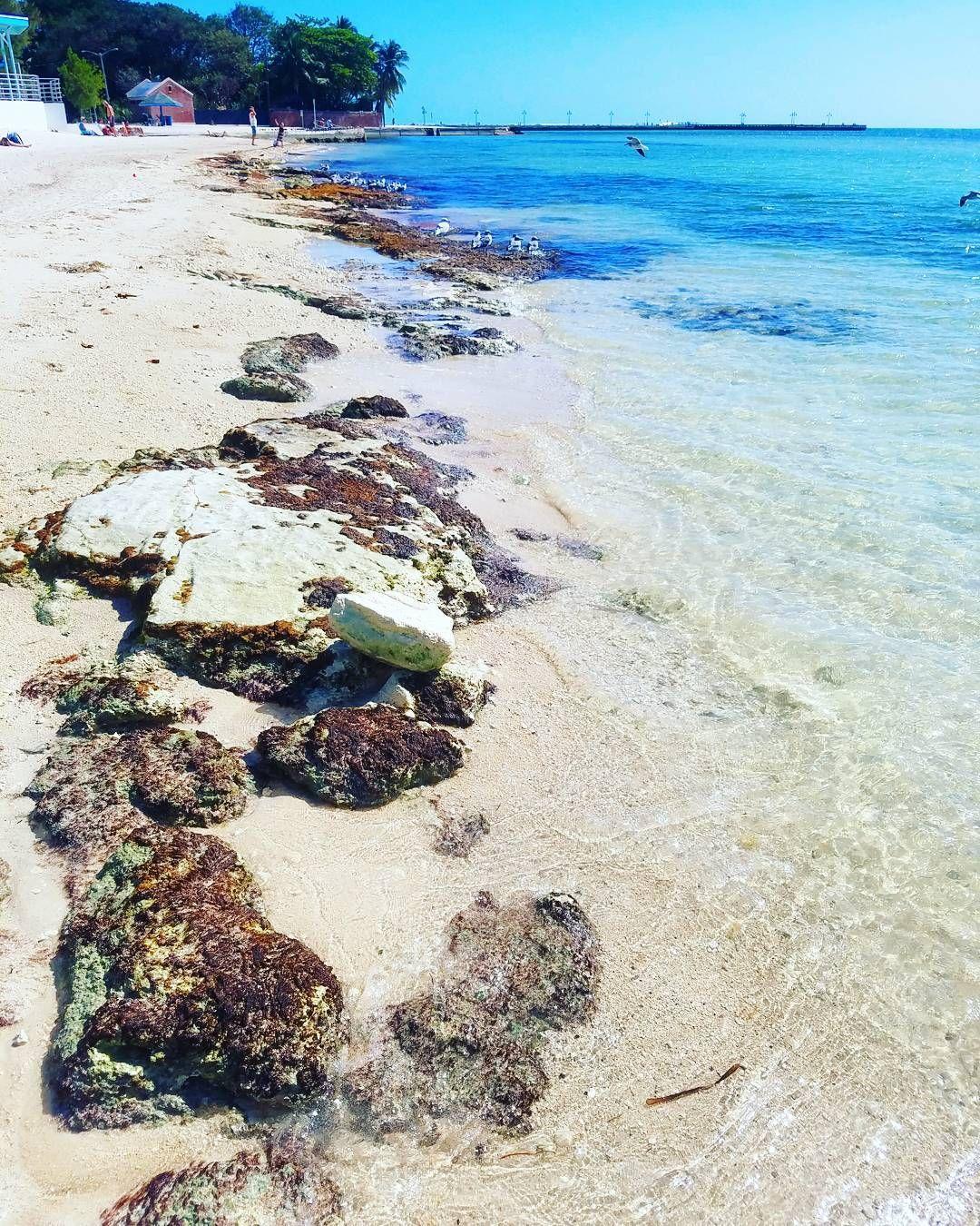 Ei voi oikeasti kaivata lämpöön kun kotona Coloradossakin on tänään melkein hellettä... mutta Floridan hiekkarannat ja meri täältä puuttuu! Mietin jo milloin seuraavaksi pääsisi Meksikonlahden rannoille.  (via Instagram)