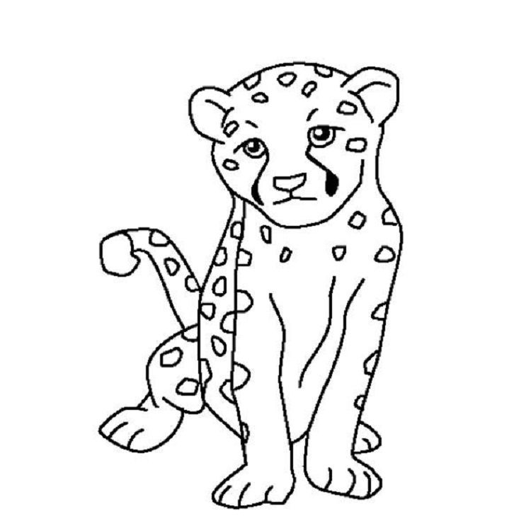 Easy Cheetah Coloring Pages Puppy Coloring Pages Zoo Animal Coloring Pages Animal Coloring Pages
