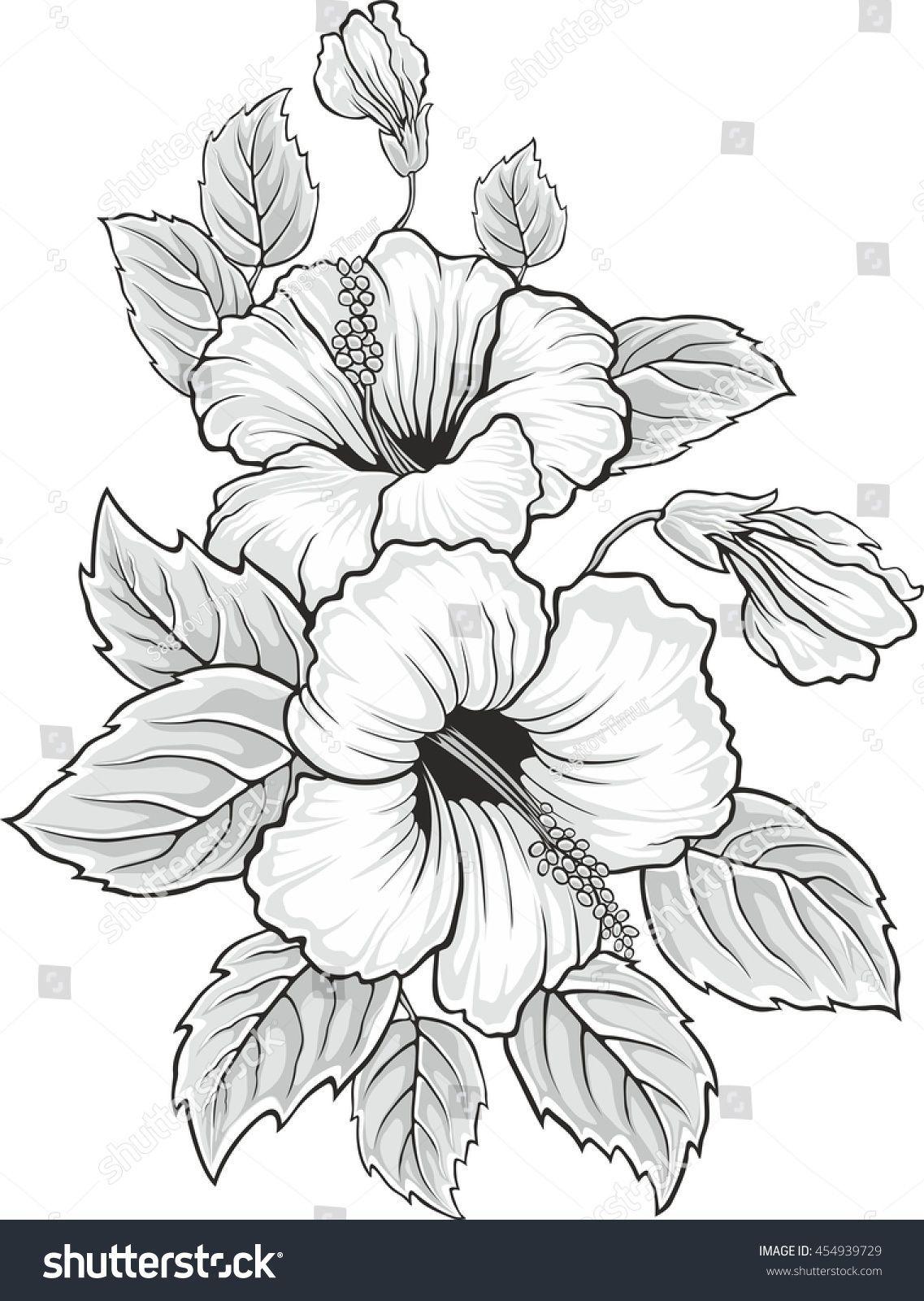 Blooming Beautiful Hibiscus Flower Hawaii Symbol Card Or Floral Background For Invitation Colo Fiori Disegnati Da Colorare Disegno Fiori Disegni Da Colorare