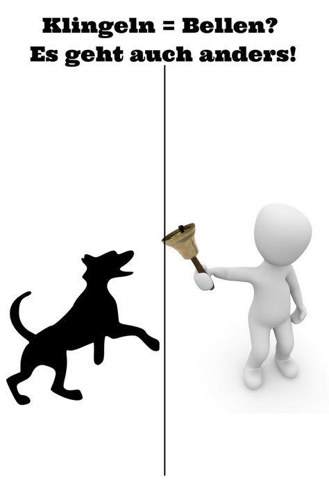 Wie Du Deinem Hund das Bellen beim Klingeln abgewöhnen