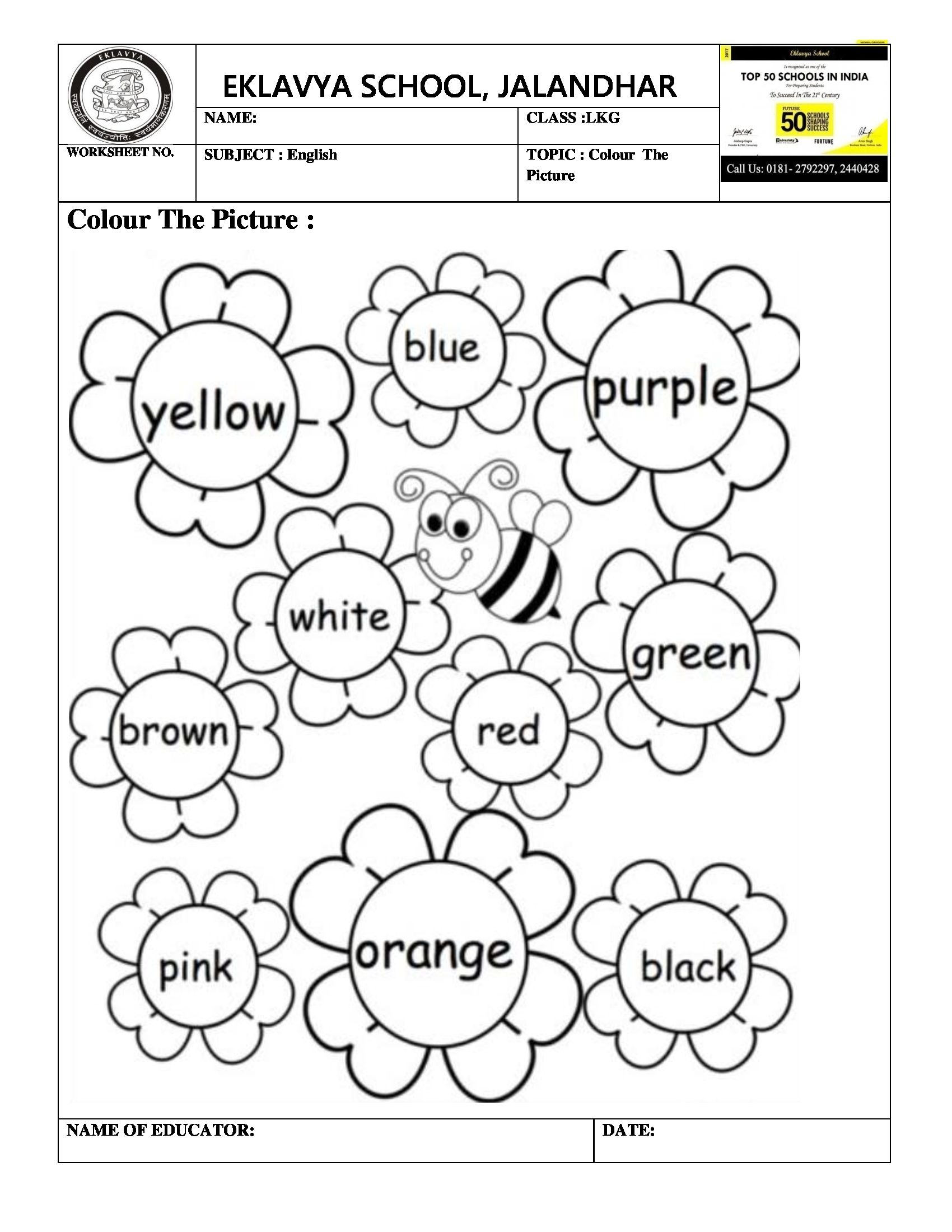 Colour the picture worksheet | Pink names, Color names ...