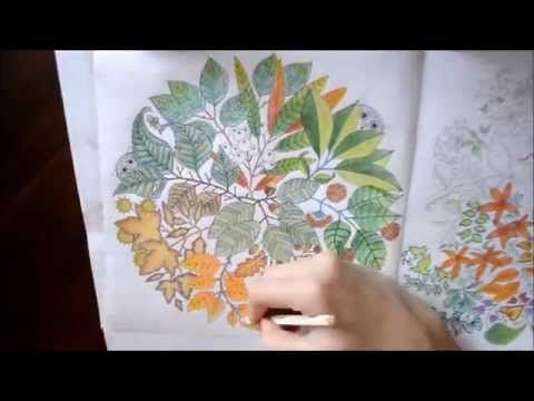 Secret Garden Coloring Book Leaves And Owls Jardim Secreto Secret Garden Coloring Book Johanna Basford Coloring Book Coloring Books