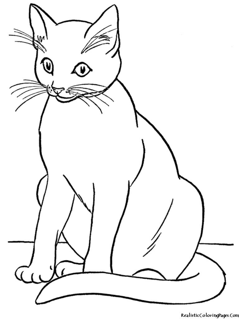 Sweet Realistic Cat Coloring Pages Tone