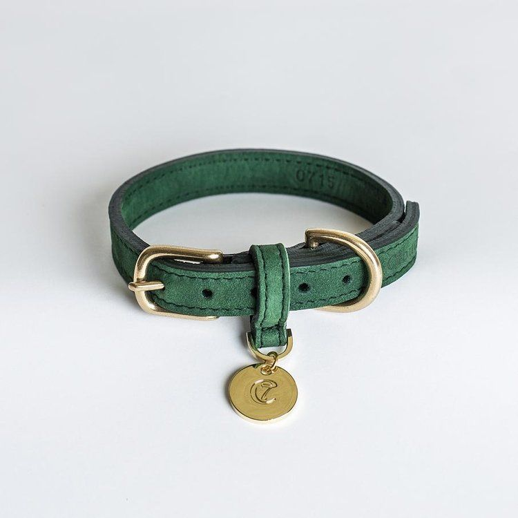 Preview 55 Png Jpeg Large Dog Collars Leather Dog Collars Nubuck Leather