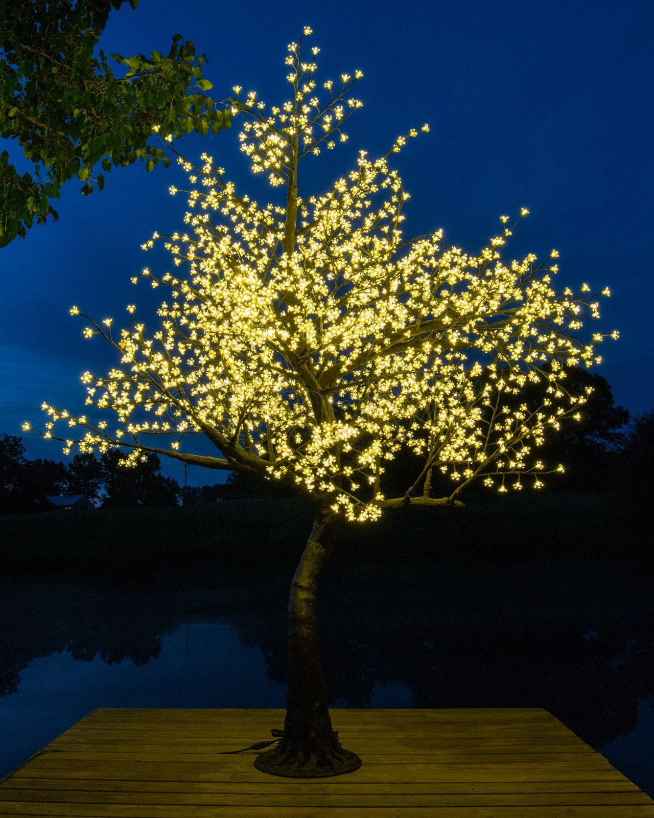 Warm White Led Cherry Tree Blossom Trees Cherry Blossom Tree Cherry Tree