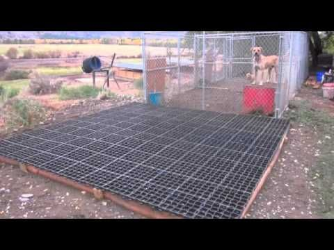 How To Build Dog Kennel Floors Using Ecogrid Pethelpful Dog Kennel Flooring Cheap Dog Kennels Diy Dog Kennel