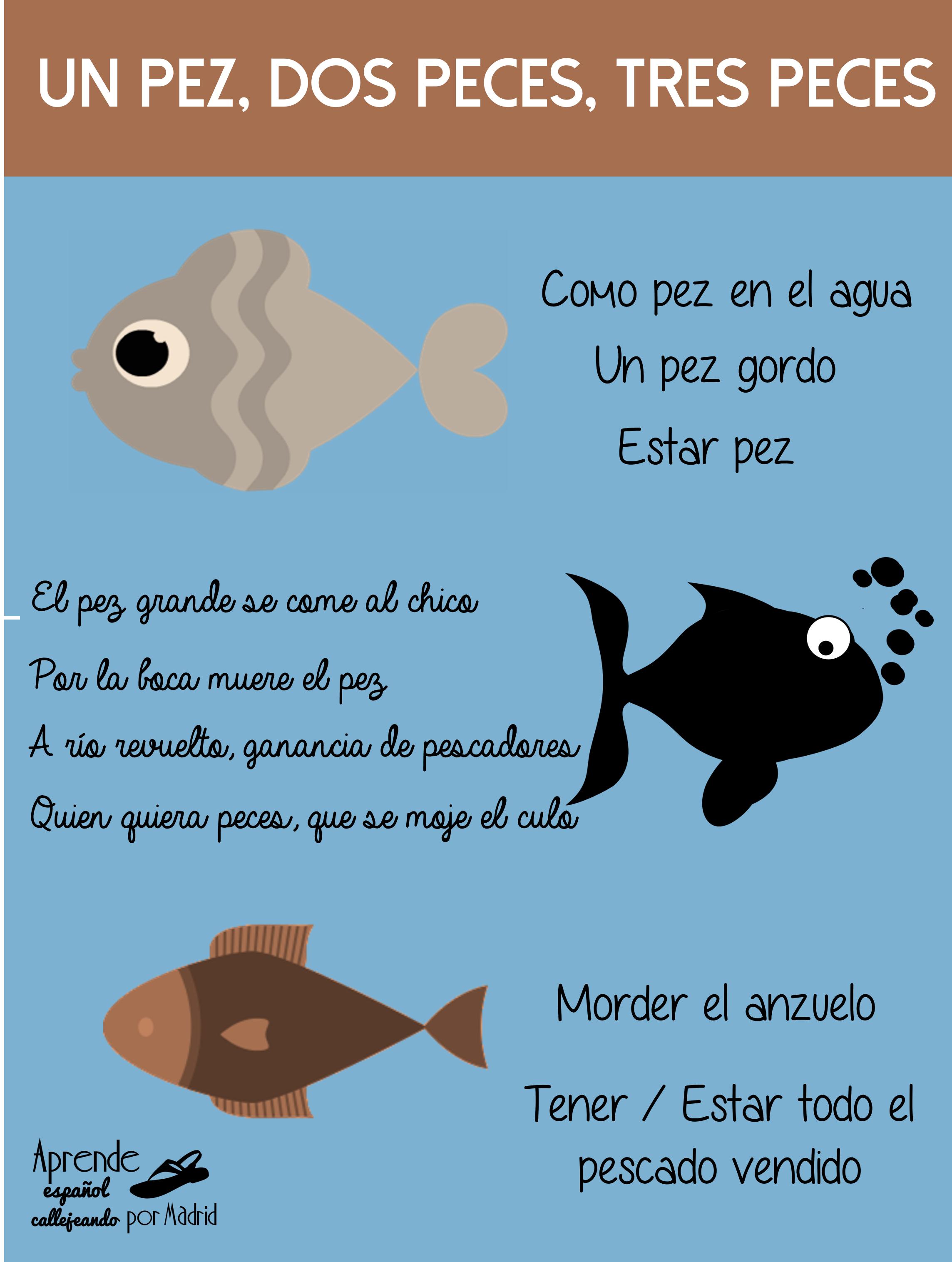 Aprende español callejeando por Madrid: Un pez, dos peces, tres ...