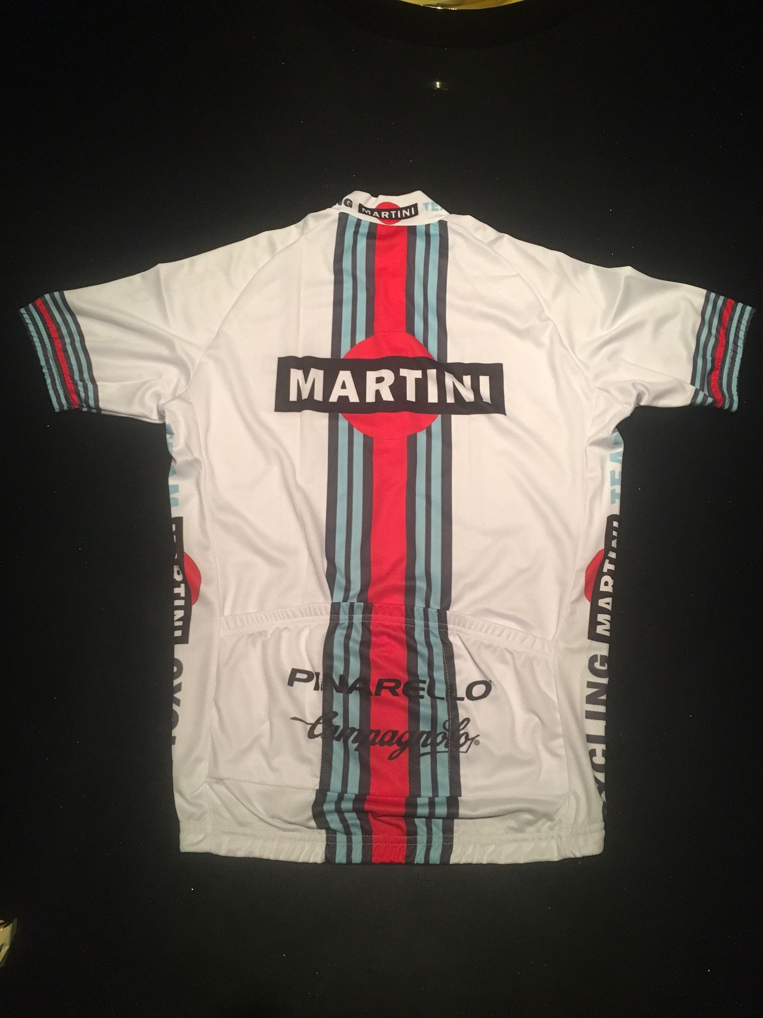 bf27de1a6 Cycling Martini Team Jersey - BACK - I like the finished custom made result  including Pinarello   Campagnolo brands.