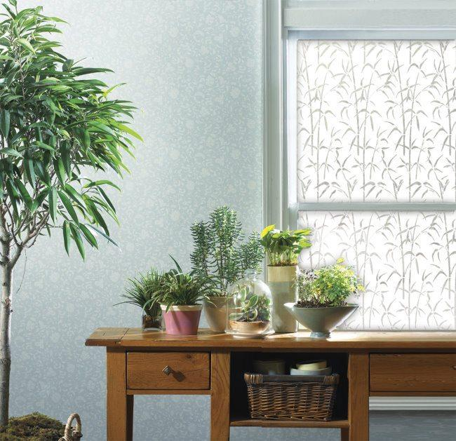 Luxury Privacy Ideas for Windows