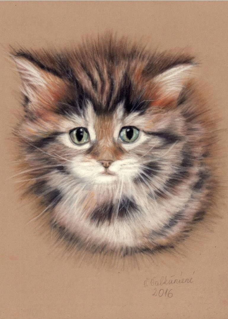 "Saatchi Art Artist Vanda Valkuniene Drawing ""Cute Kitten"" art"