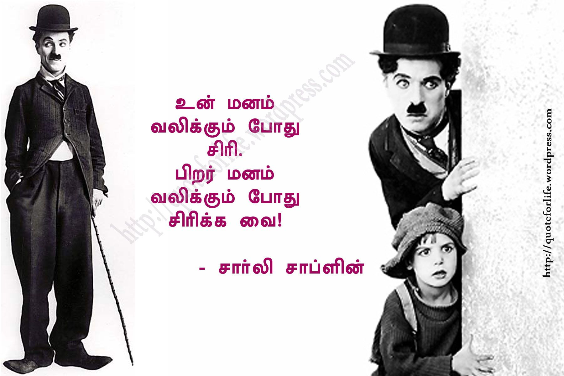 Pin by shafiya sweetz on qoutes and inspirations | Tamil