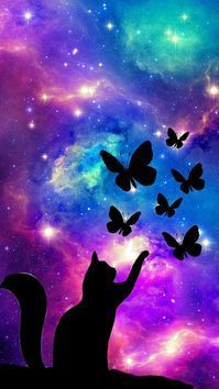 Photo of Cat Galaxy With Butterfly's???? #frühlingsdekobasteln