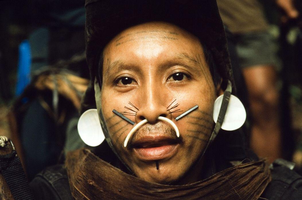 Matis tribe, Brazil Tawa - Ear jewelry Demush - Nostril ...