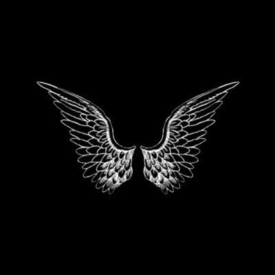 White Wing Transparent Shared By Brilliantflame Wings Wallpaper Wings Black Wallpaper Cool black photo wallpaper images