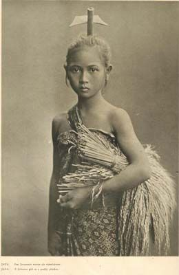 Gadis Jawa Pemetik Padi 1935 24 Oct 2007 Bahasa Indonesia Indonesian Art World Cultures Old Photos