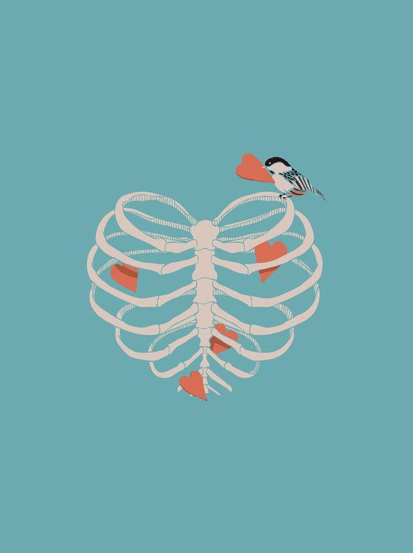 Heart Bird Anatomical Love It Happiness Pinterest Art Art