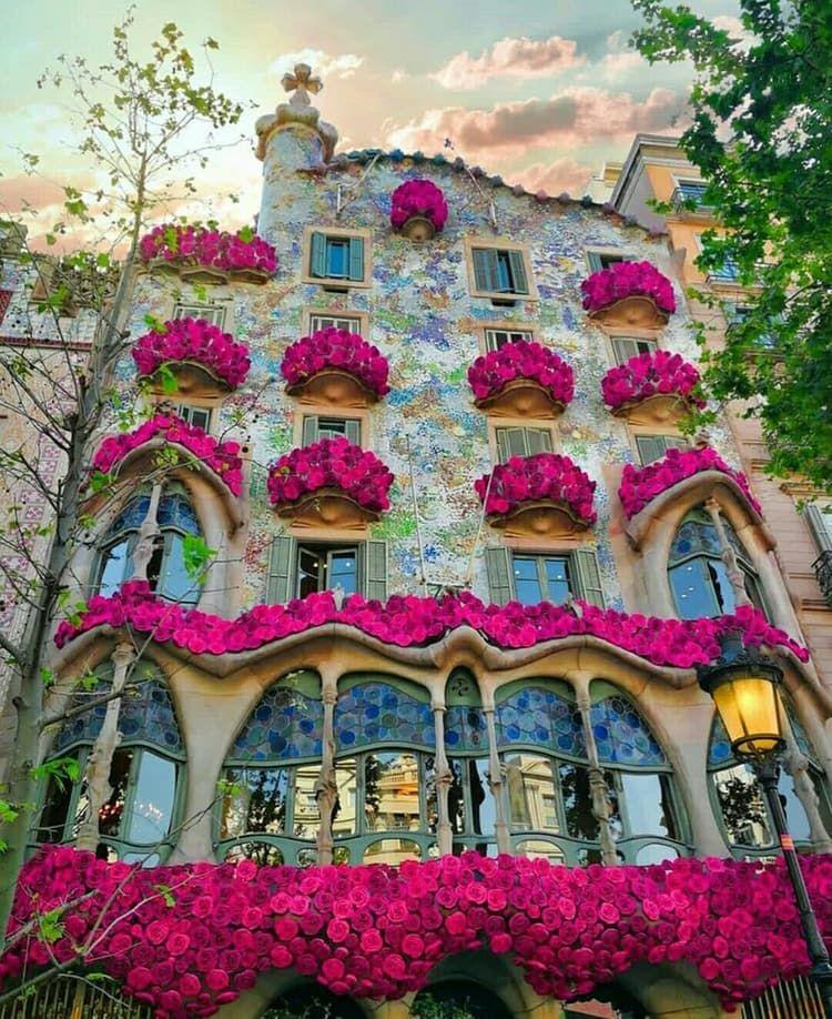 Casa Batló Barcelona Spain Shared By K A Y T L Y N Coffee Stylish Flowers Cozy Break Inspiration Https Casa Batlo Paseo De Gracia Arquitectura