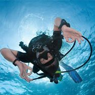 Underwater Adventure Is In Daytona Beach Try Scuba Diving To See The Area S Natural Reefs Snorkel At A Nearby Park For Crystal Clear Views