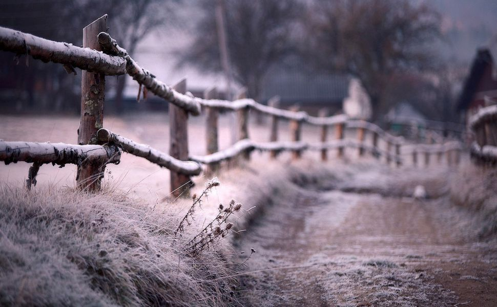 Frosty country road HD Wallpaper