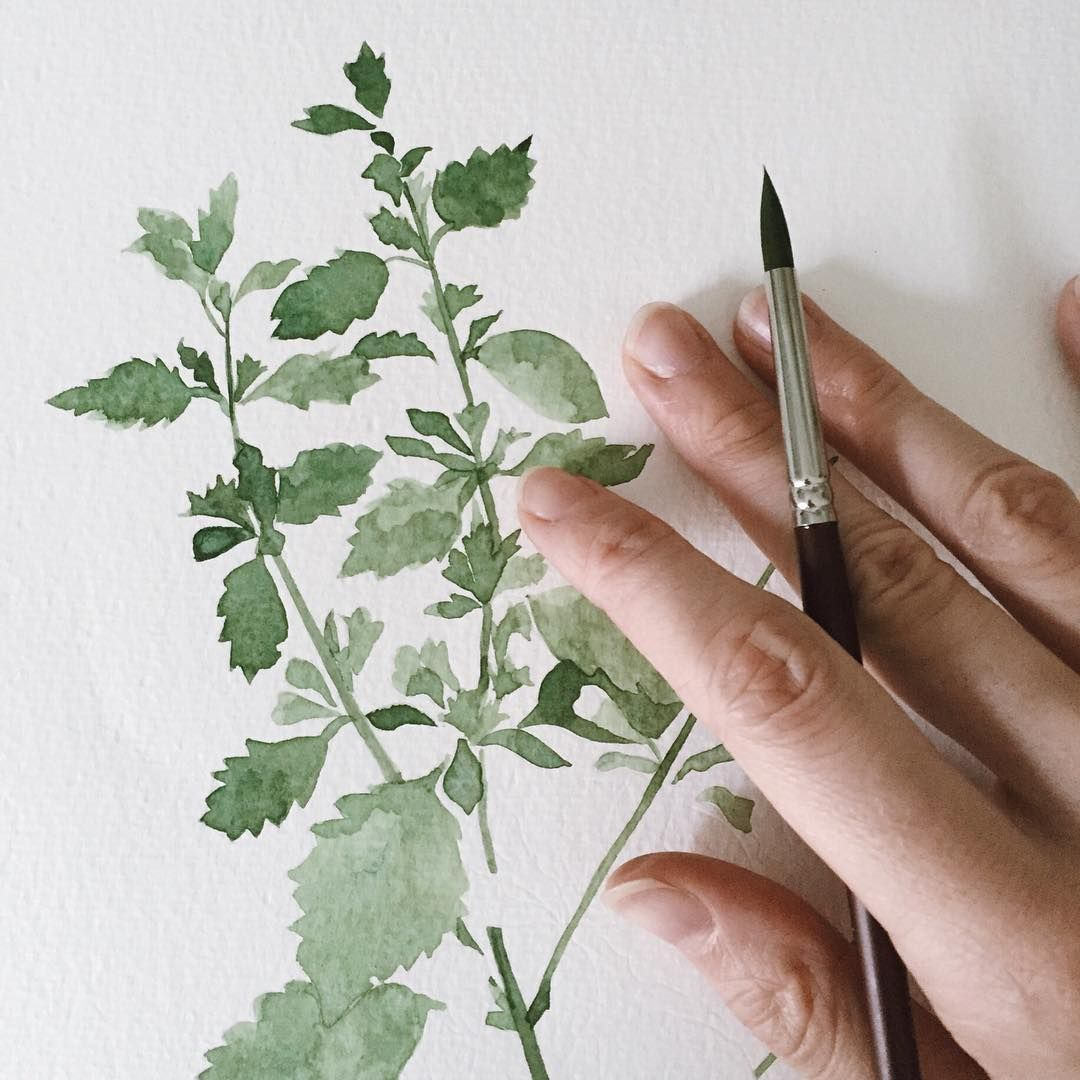 Painting leaves is one of my very favourite things.  This Friday, it's all about the lemon balm.