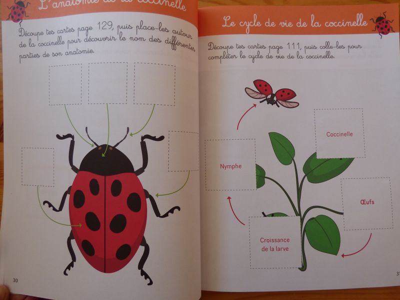 Eveil Version Montessori Ressources Pour S Amuser Ensemble Montessori Decouverte Du Monde Ressources