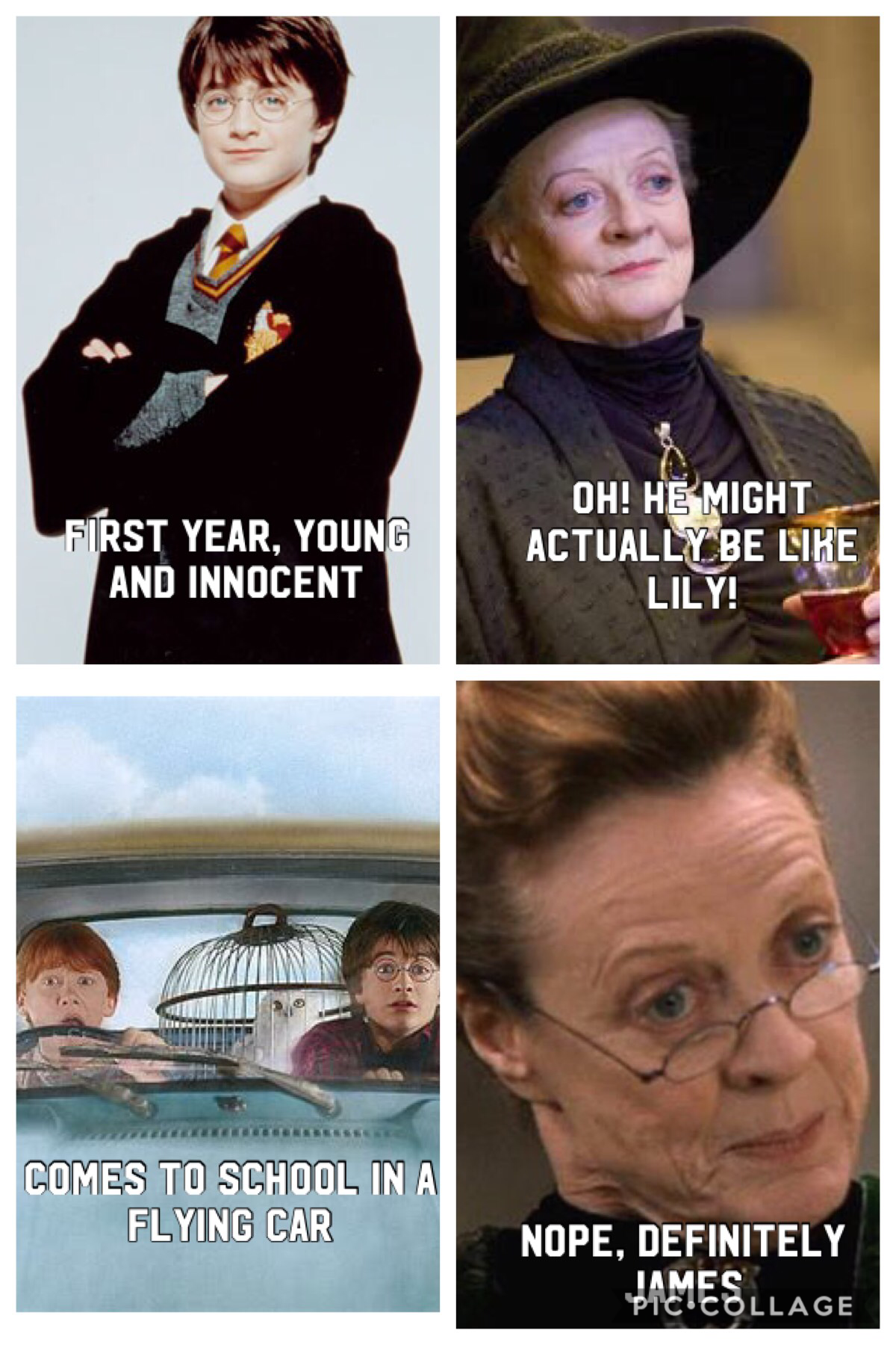 Pin By Aamina S 148 On Harry Potter And Fantastic Beasts Harry Potter Universal Harry Potter Puns Harry Potter Memes